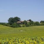 Intégration bâtiment - Arbres & Paysages Tarnais