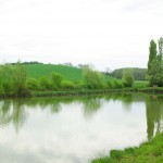 Haie-Arbres & Paysages Tarnais