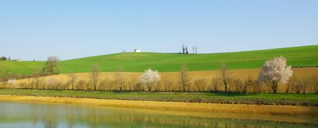 Plantation haie-Arbres & Paysages Tarnais
